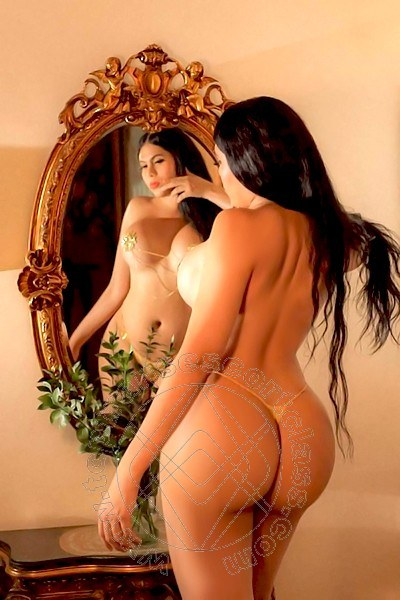 Miss Violeta  BARI 3312354244